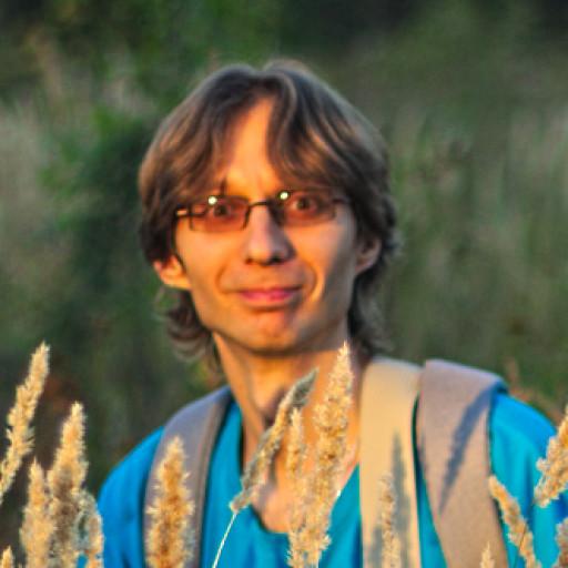Ряполов Михаил Павлович 'ın resmi